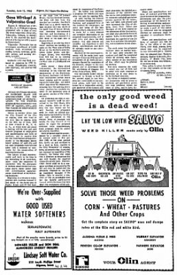 The Algona Upper Des Moines from Algona, Iowa on June 15, 1965 · Page 10