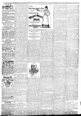 Logansport Pharos-Tribune from Logansport, Indiana on May 8, 1894 · Page 7